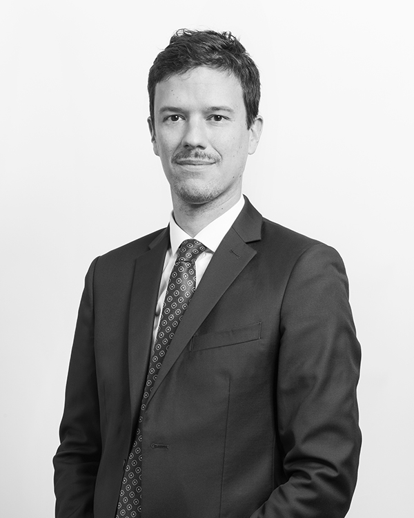 Pierre Menegaux - Avocat - RMT